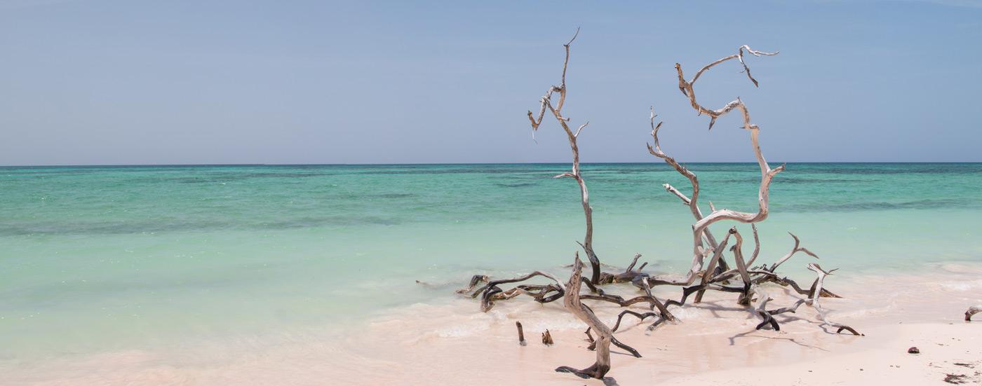 Cayo Jutia beach
