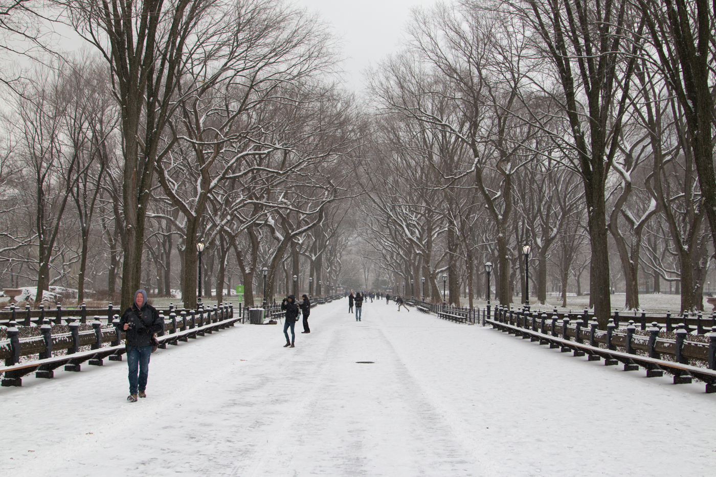 Central Park mall covered in snow