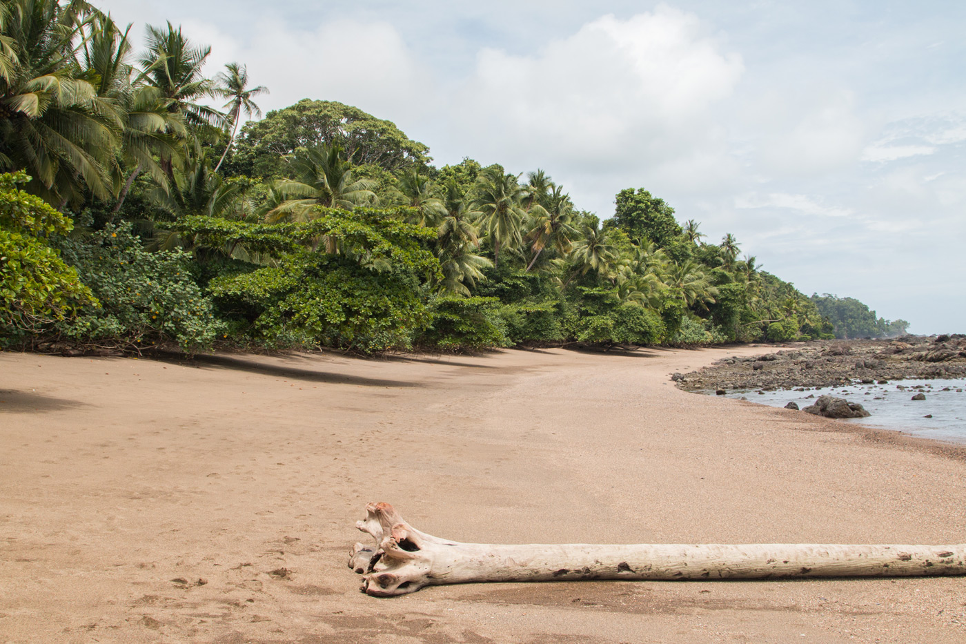 Remote beach in Corcovado National Park
