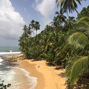 Costa Rica - Wildlife, rainforests & pura vida