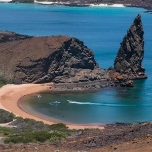 Galápagos Islands - Sea lions, turtles & mucho más