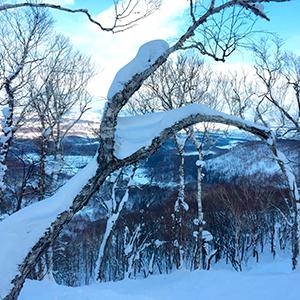 Japan - Settling in for 5 weeks on snow