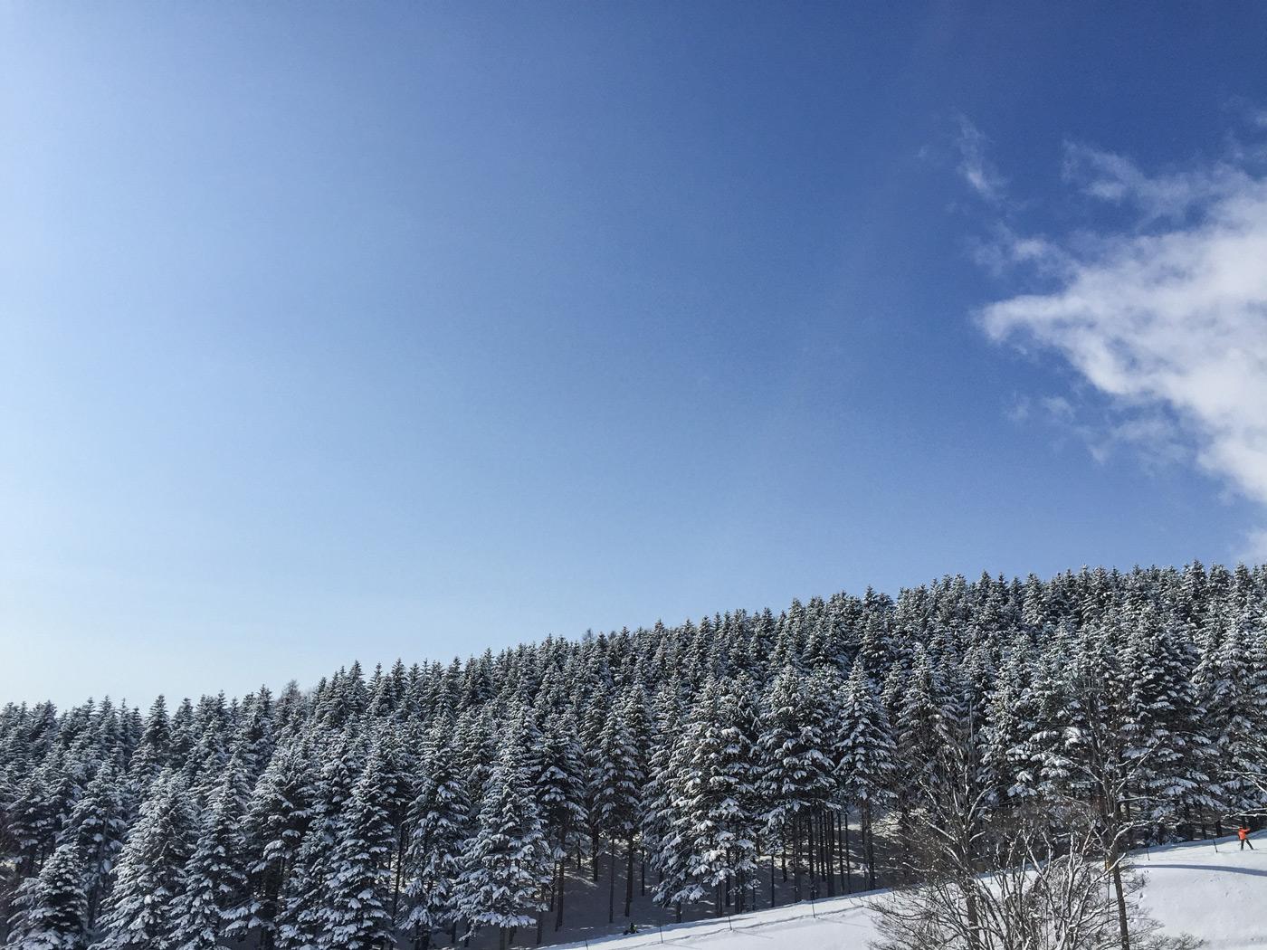 Blue sky, fresh snow, good day