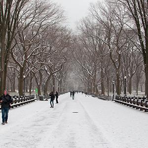 USA - New York City - Snow & Sites