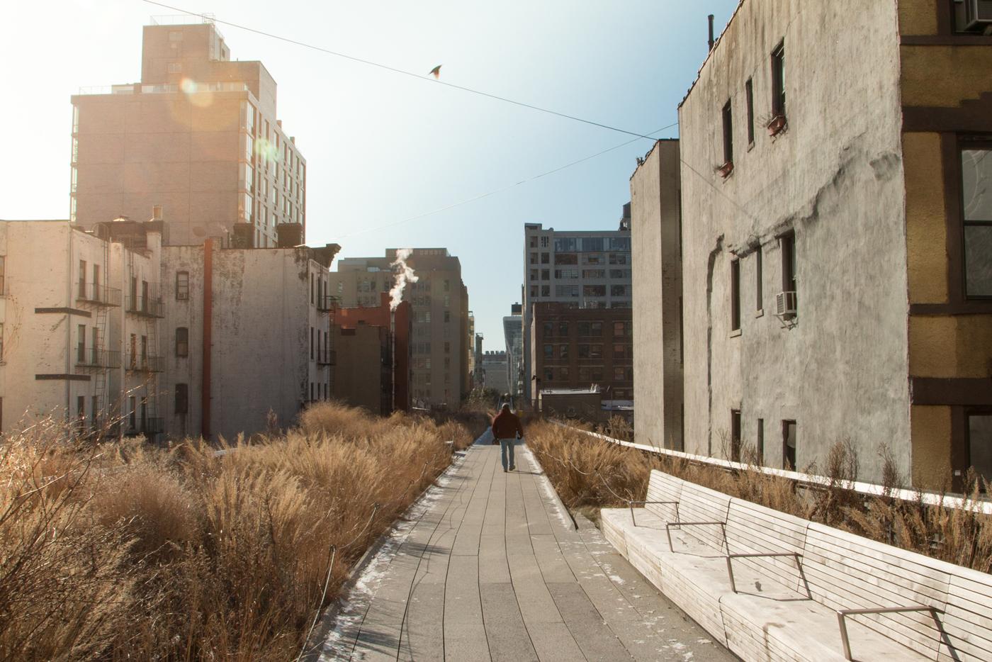Walking through High Line Park