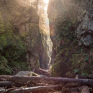 USA - Portland, Oregon - An amazing place